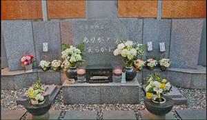 2015-01-23_1124591
