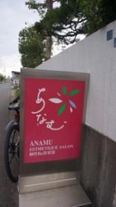 anamu2