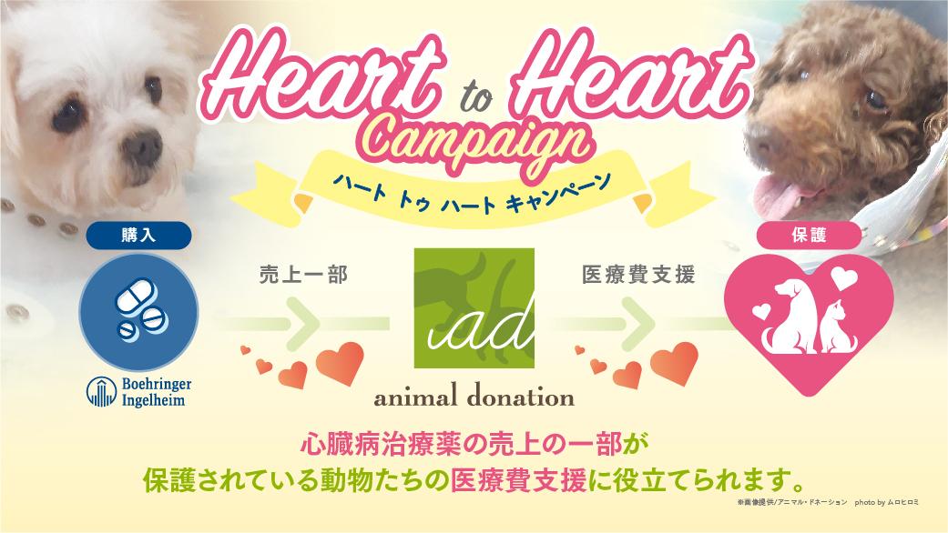 Heart to Heart キャンペーン