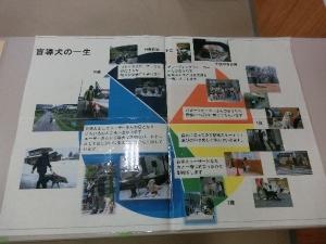 CIMG46291.jpg