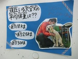 CIMG46451.jpg