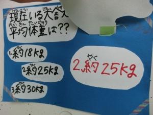 CIMG46461.jpg