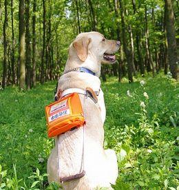 『お仕事中』と書かれた場所には本来なら盲導犬という表示が入り、その下のポケットには盲導犬の証明である証明書が入るそうです。