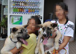 日本動物福祉協会様 CCクロ