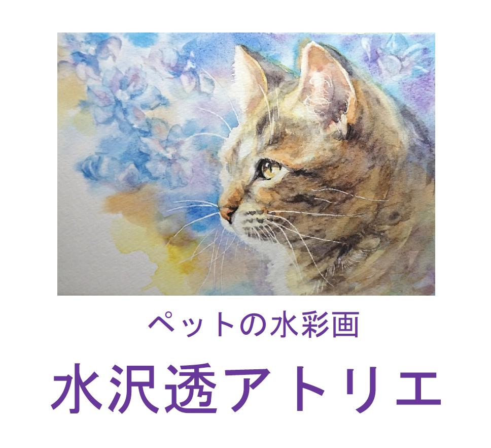 ペットの水彩画 水沢透アトリエ