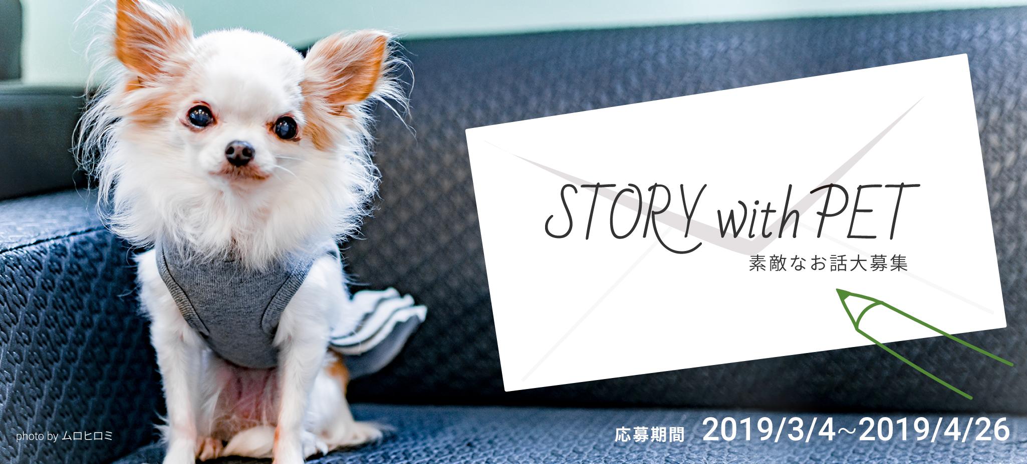 Story With Pet 公益社団法人アニマル ドネーション